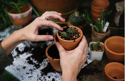 Tuinieren met RA