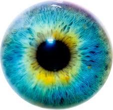 RA en onze ogen