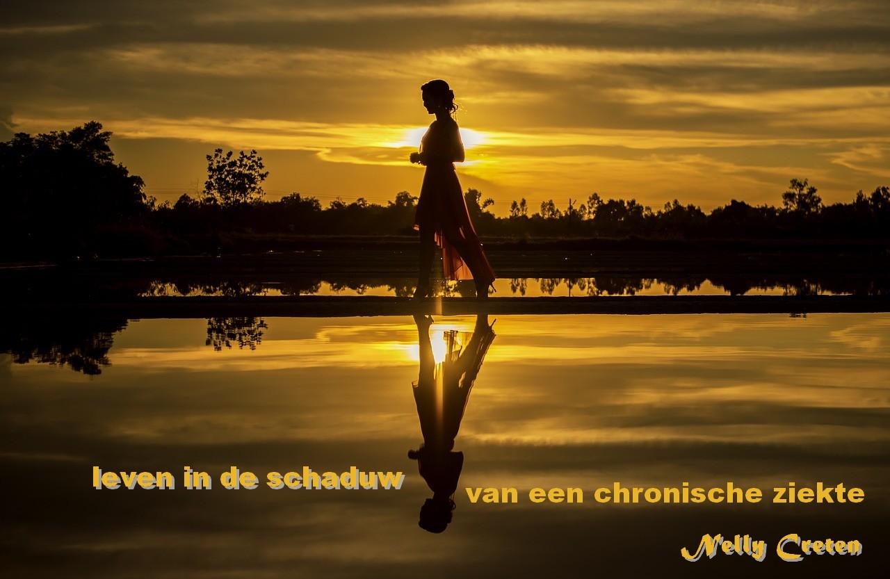 Zorgpad RA - AZ Turnhout - leven in de schaduw van een chronische ziekte - Nelly Creten