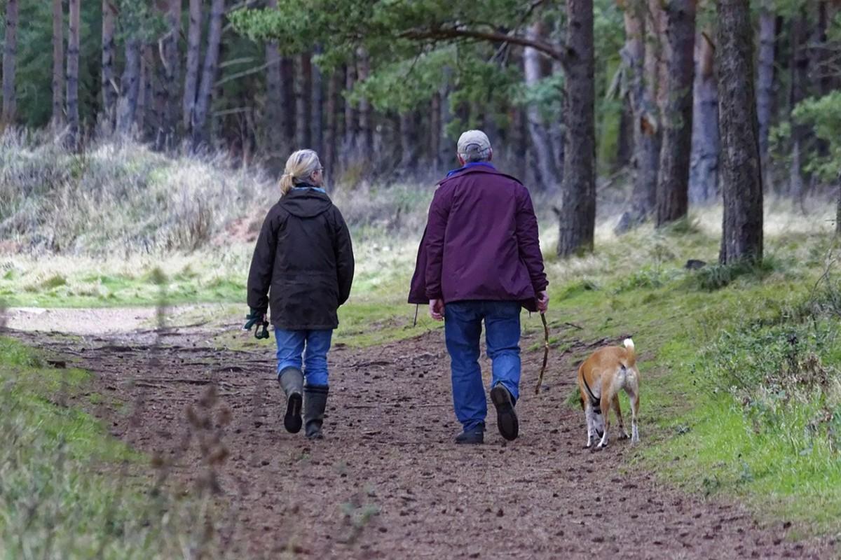 Waarom is wandelen zo gezond?